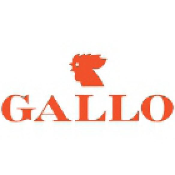 Shoes Man Gallo